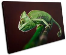 Gekko Wildlife Abstract - 13-1571(00B)-SG32-LO